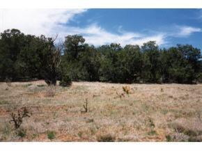 0 Rory Lane SE Property Photo - Edgewood, NM real estate listing