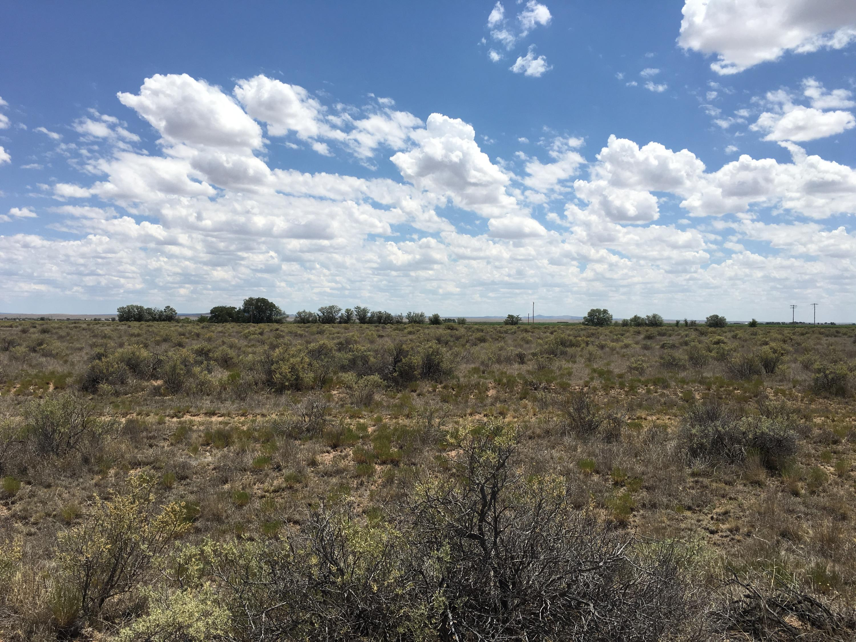 210 Valle Verde Property Photo - McIntosh, NM real estate listing