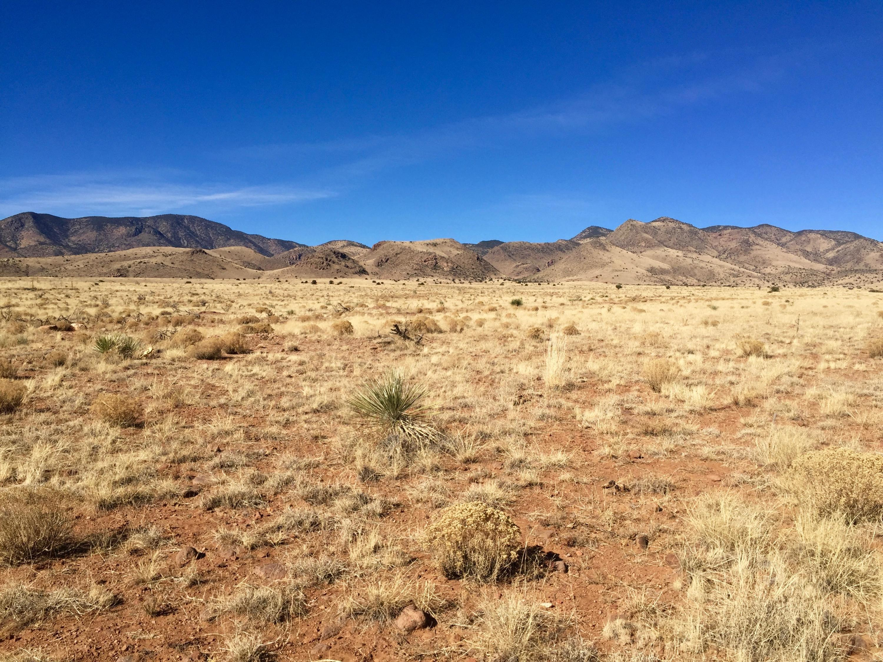 122 Golden Ridge Road Property Photo - San Antonio, NM real estate listing