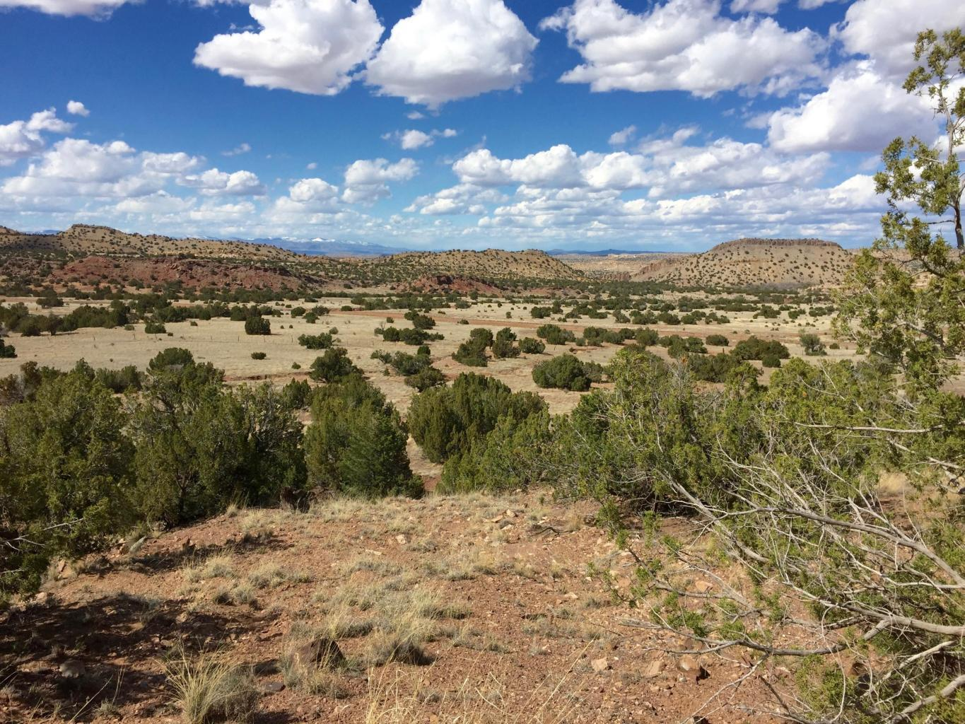 La Madera & Puertocito Property Photo - Sandia Park, NM real estate listing