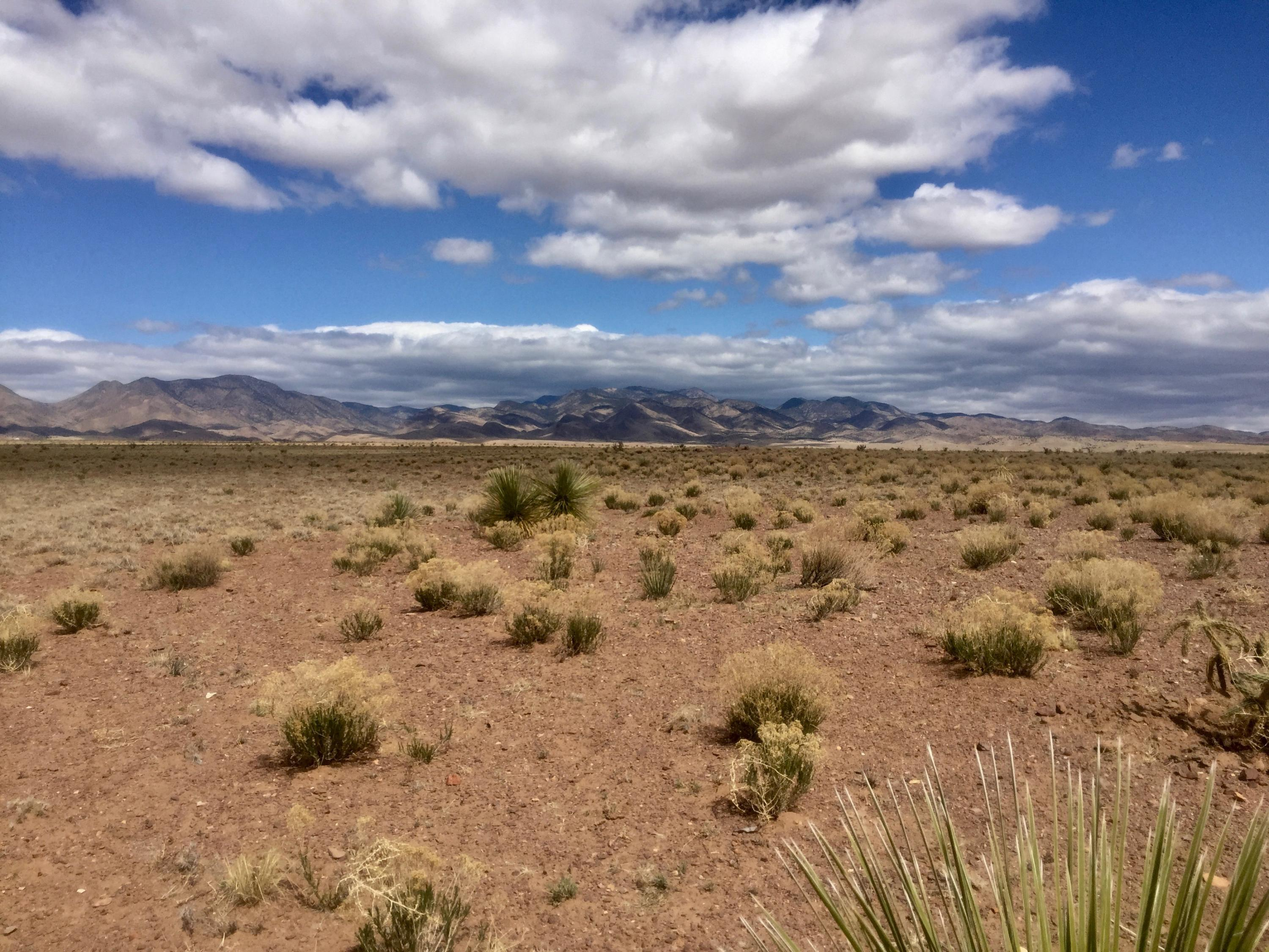 249 Morning Vista Road Property Photo - San Antonio, NM real estate listing