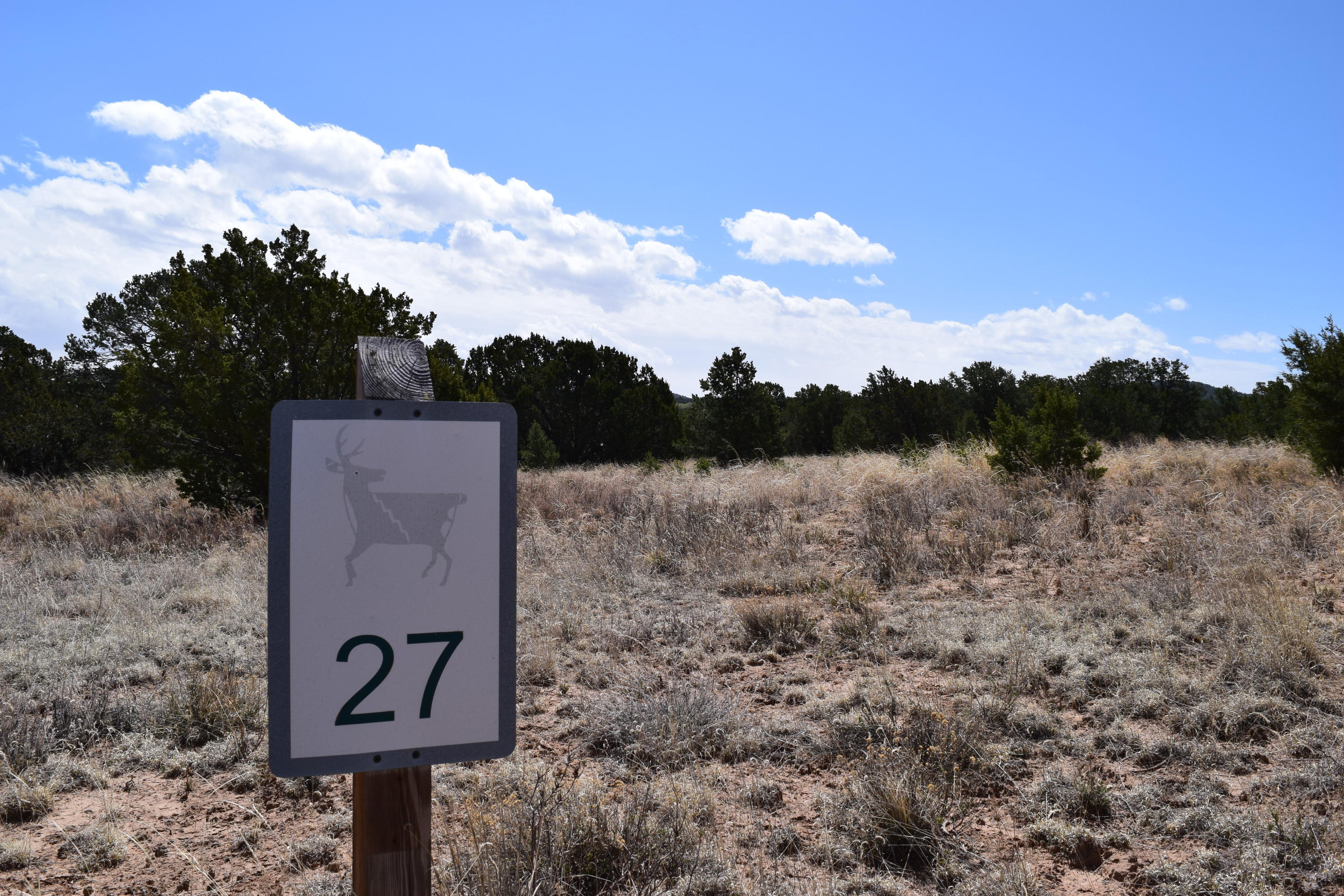 Lot 27 Nature Pointe Drive Property Photo - Tijeras, NM real estate listing