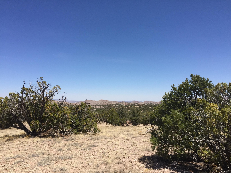 45 Camino del Sueno, Magdalena, NM 87825 - Magdalena, NM real estate listing