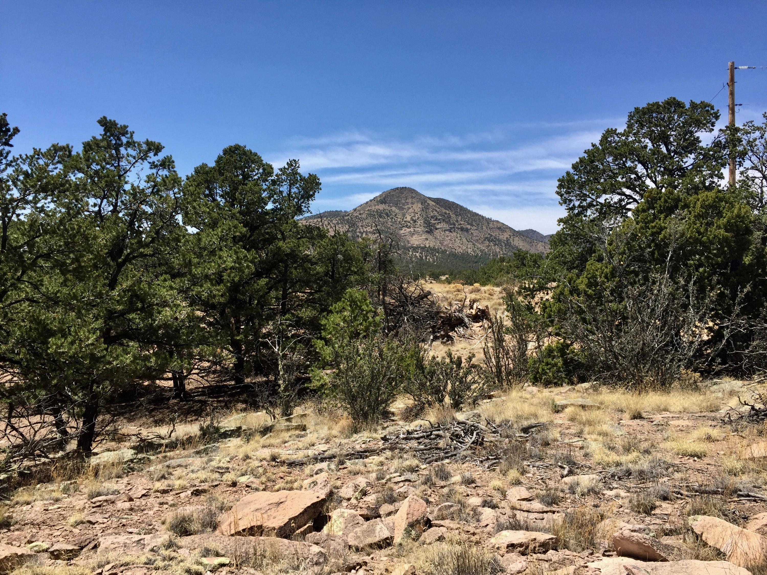 67 & 68 Lookout Circle Property Photo - Datil, NM real estate listing