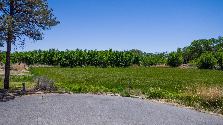 Nelson Ct. Property Photo