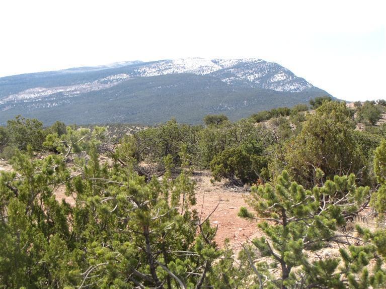 2-B Camino Del Cuervo Property Photo - Placitas, NM real estate listing