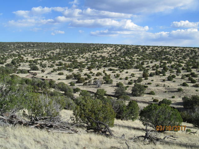 28 Spiritway Property Photo - Magdalena, NM real estate listing