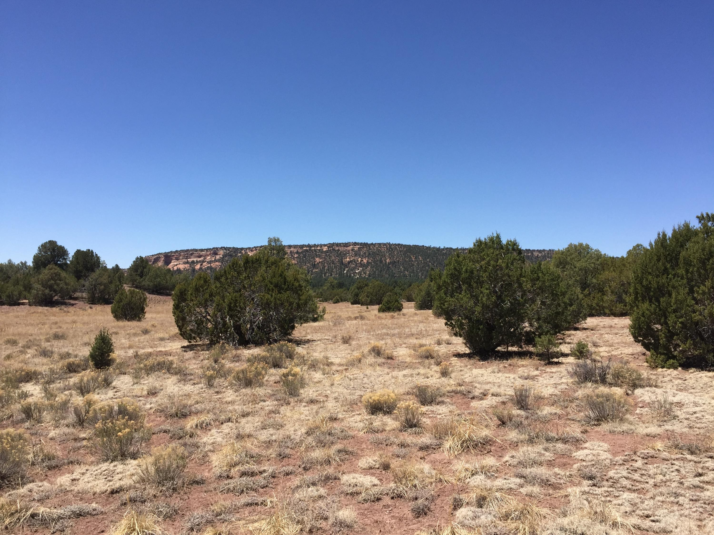 Lot 21 Copperweed Road Property Photo - Ramah, NM real estate listing