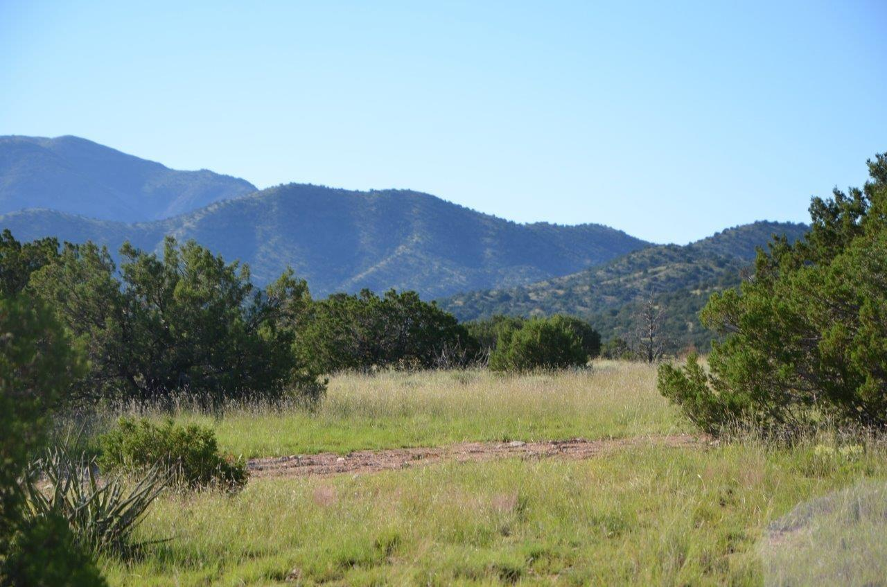 47 Stagecoach Trail Property Photo - Sandia Park, NM real estate listing