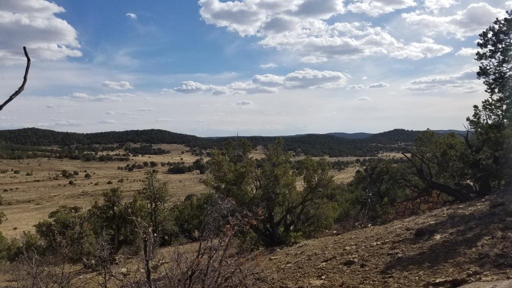 U4 Lot 18 Wild Horse Ranch Property Photo
