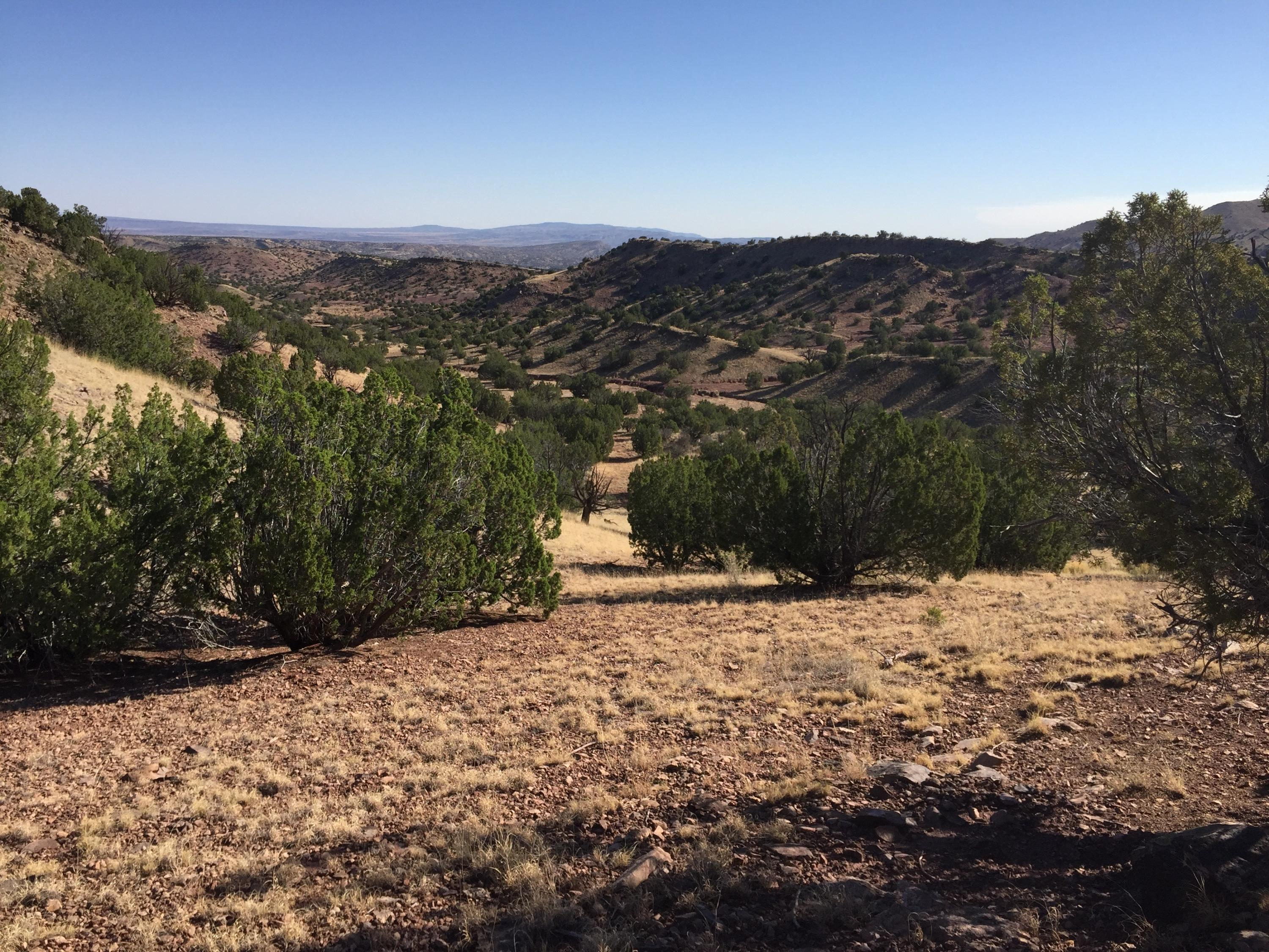 13 Abbe Springs Ranches Property Photo - Magdalena, NM real estate listing
