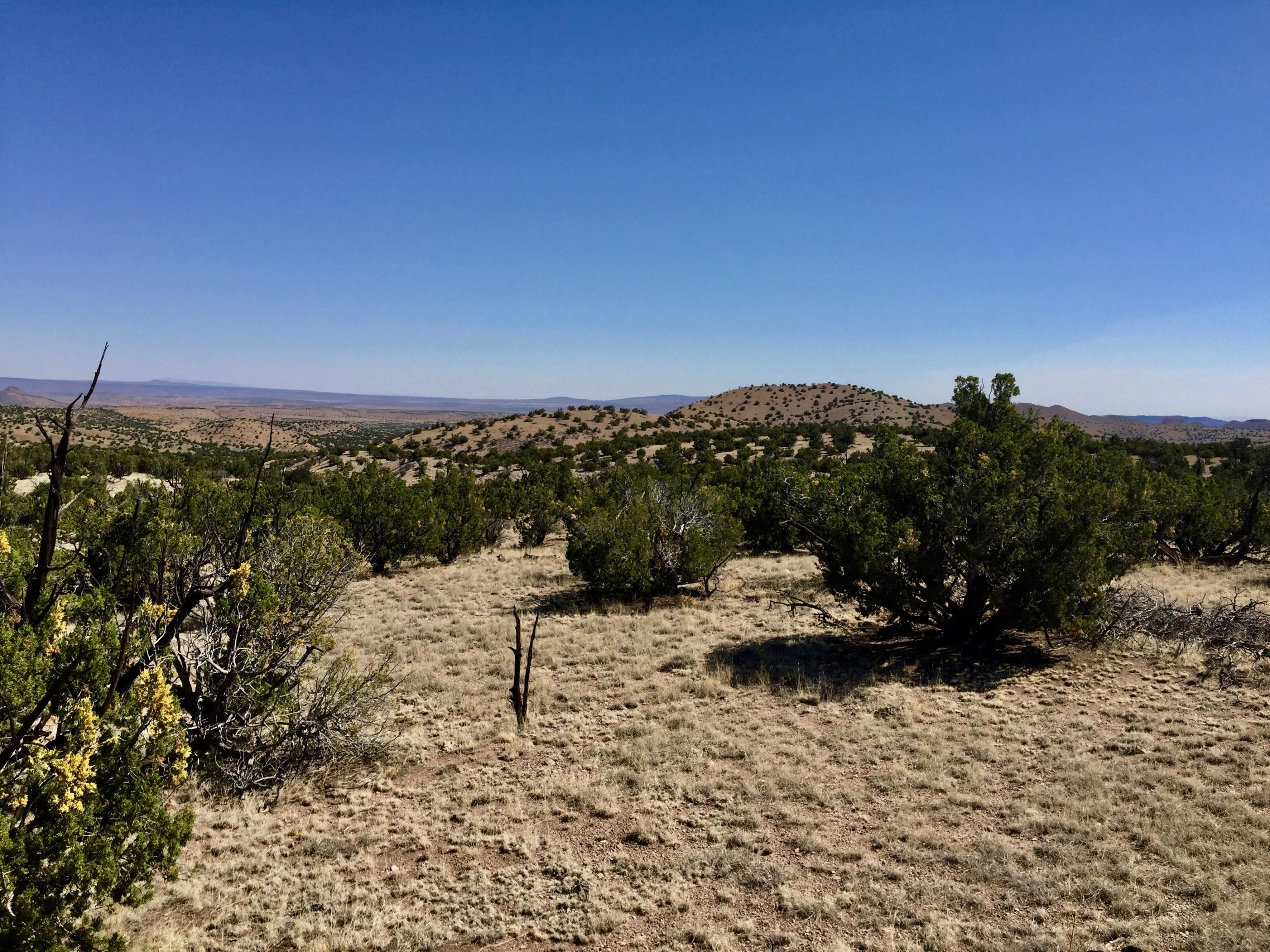 42 Abbe Springs Ranches Property Photo - Magdalena, NM real estate listing