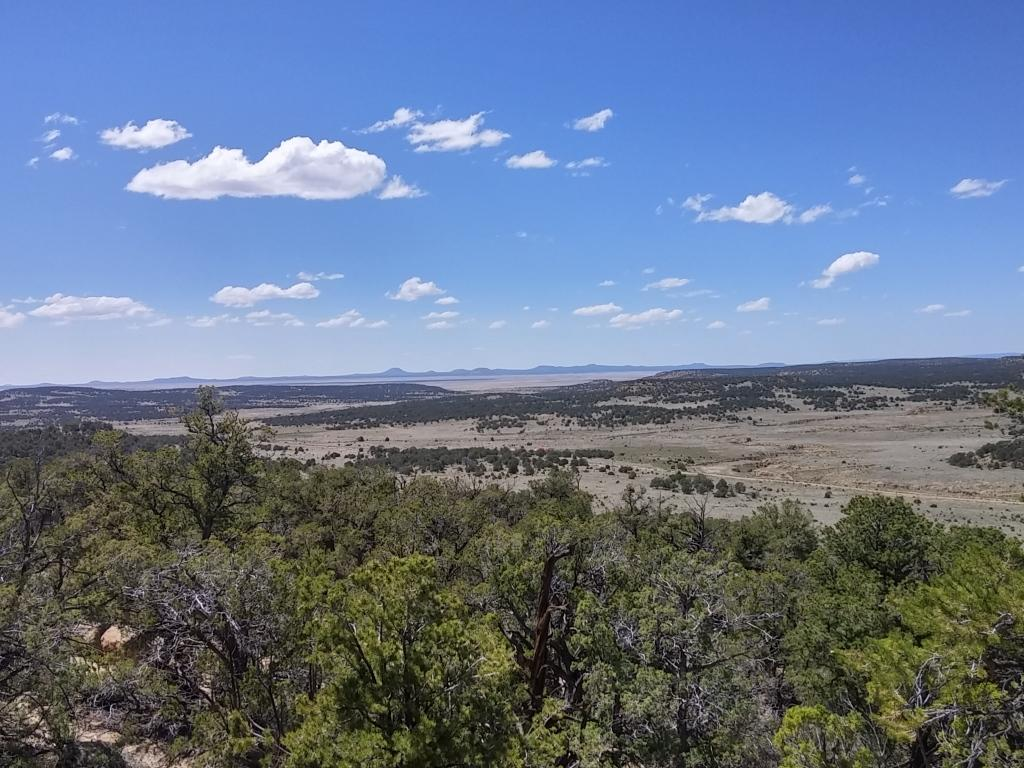 Ph4 Lot 52 Wild Horse Ranch Property Photo - Pie Town, NM real estate listing