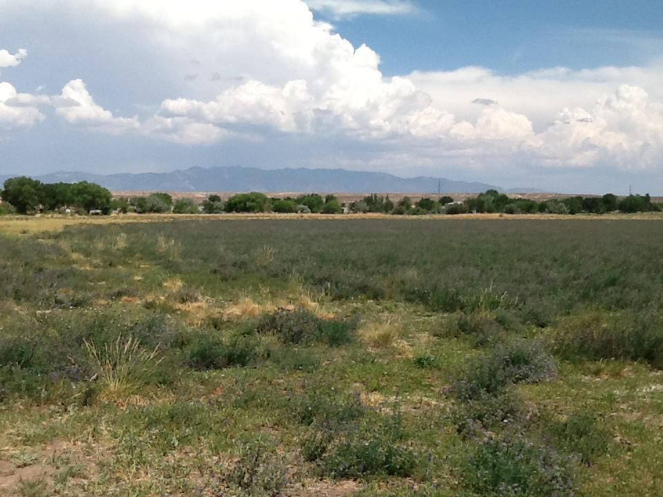 Marquez Road Property Photo - Los Lunas, NM real estate listing