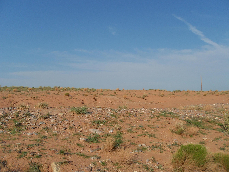 Terra Grande, Socorro, NM 87801 - Socorro, NM real estate listing