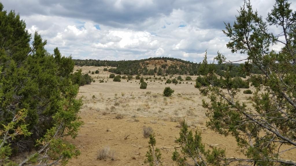 U4 Lot 89 Wild Horse Ranch Property Photo