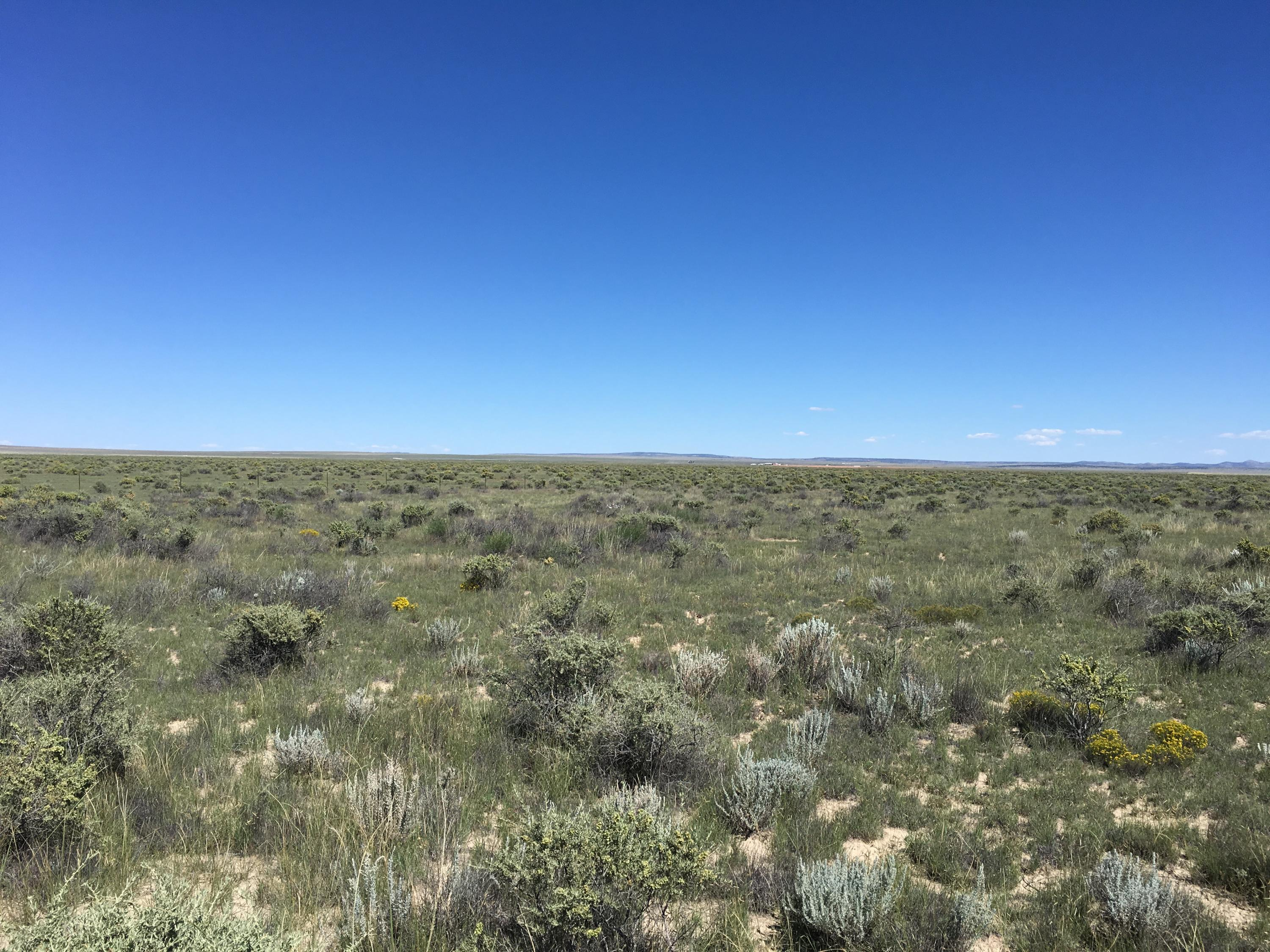 Willow Lake Road Property Photo - McIntosh, NM real estate listing