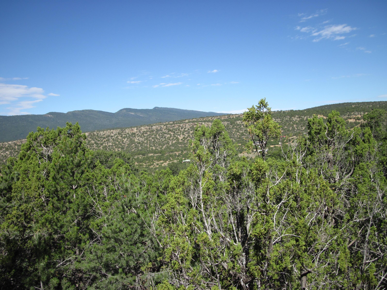 30 Rattlesnake Ridge, Tijeras, NM 87059 - Tijeras, NM real estate listing