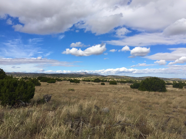 58 Pinon Springs Ranches Property Photo - Magdalena, NM real estate listing