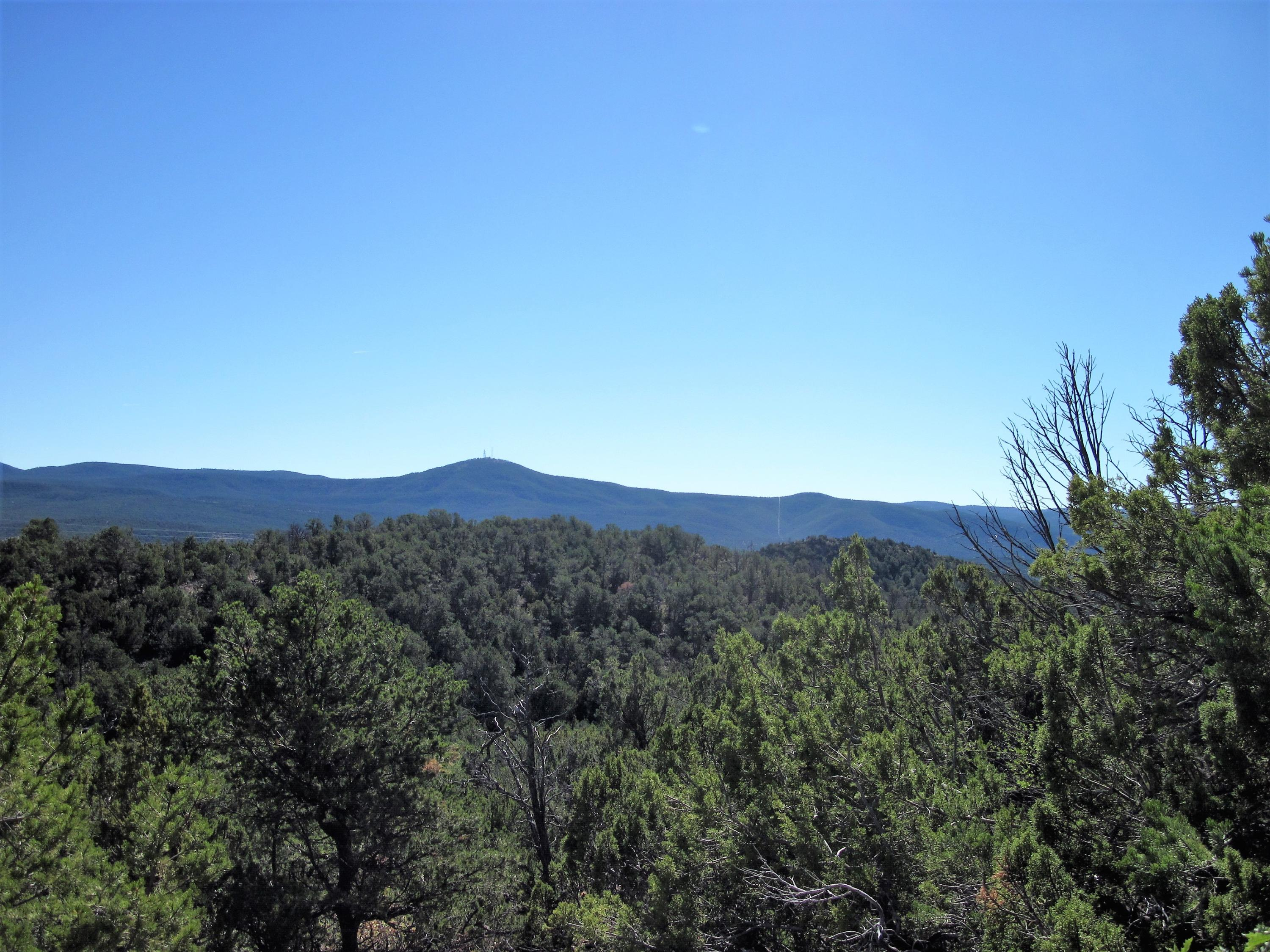 23 Vista Grande Property Photo - Cedar Crest, NM real estate listing