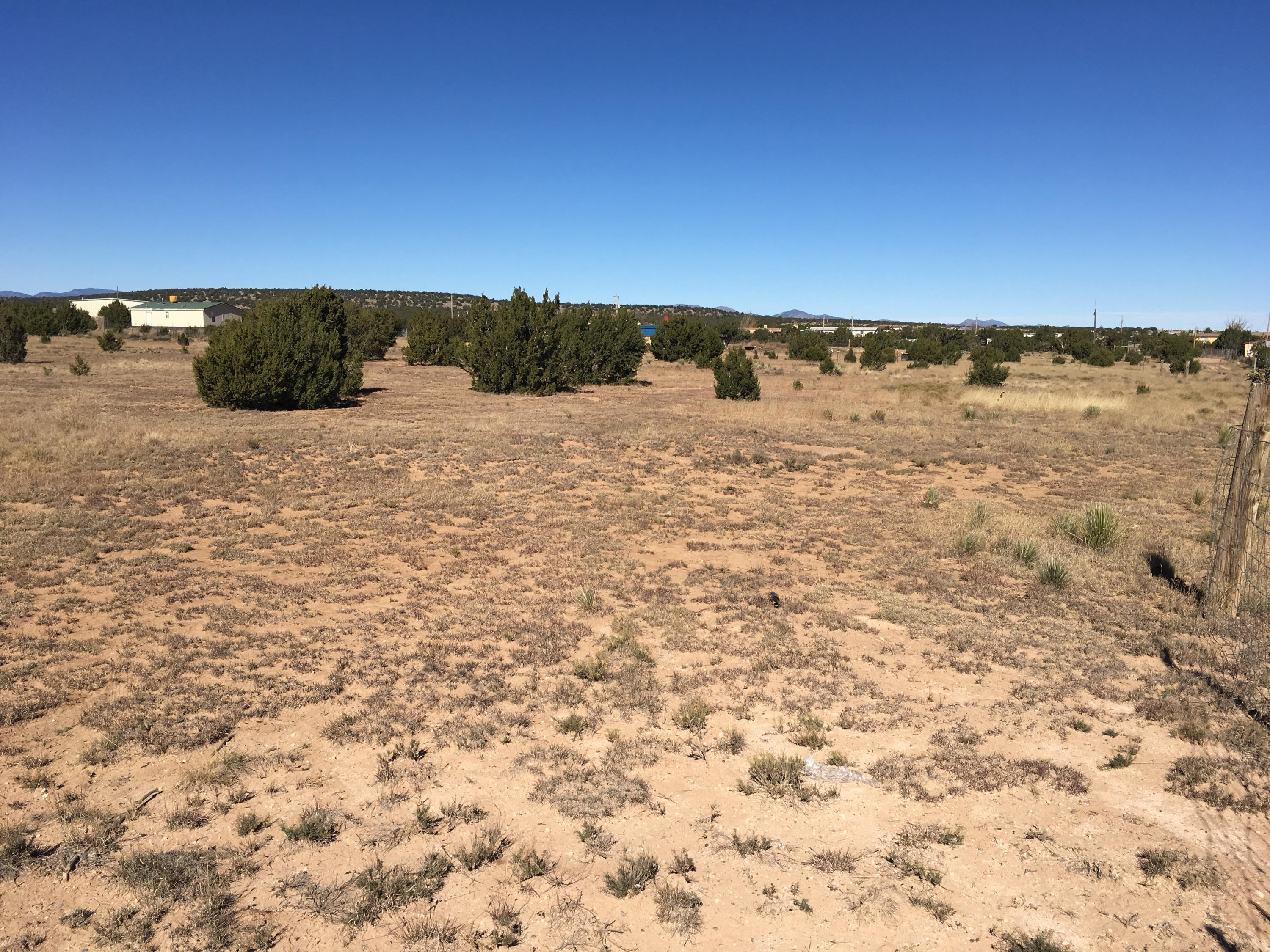 Silver Maple Avenue Property Photo - Moriarty, NM real estate listing