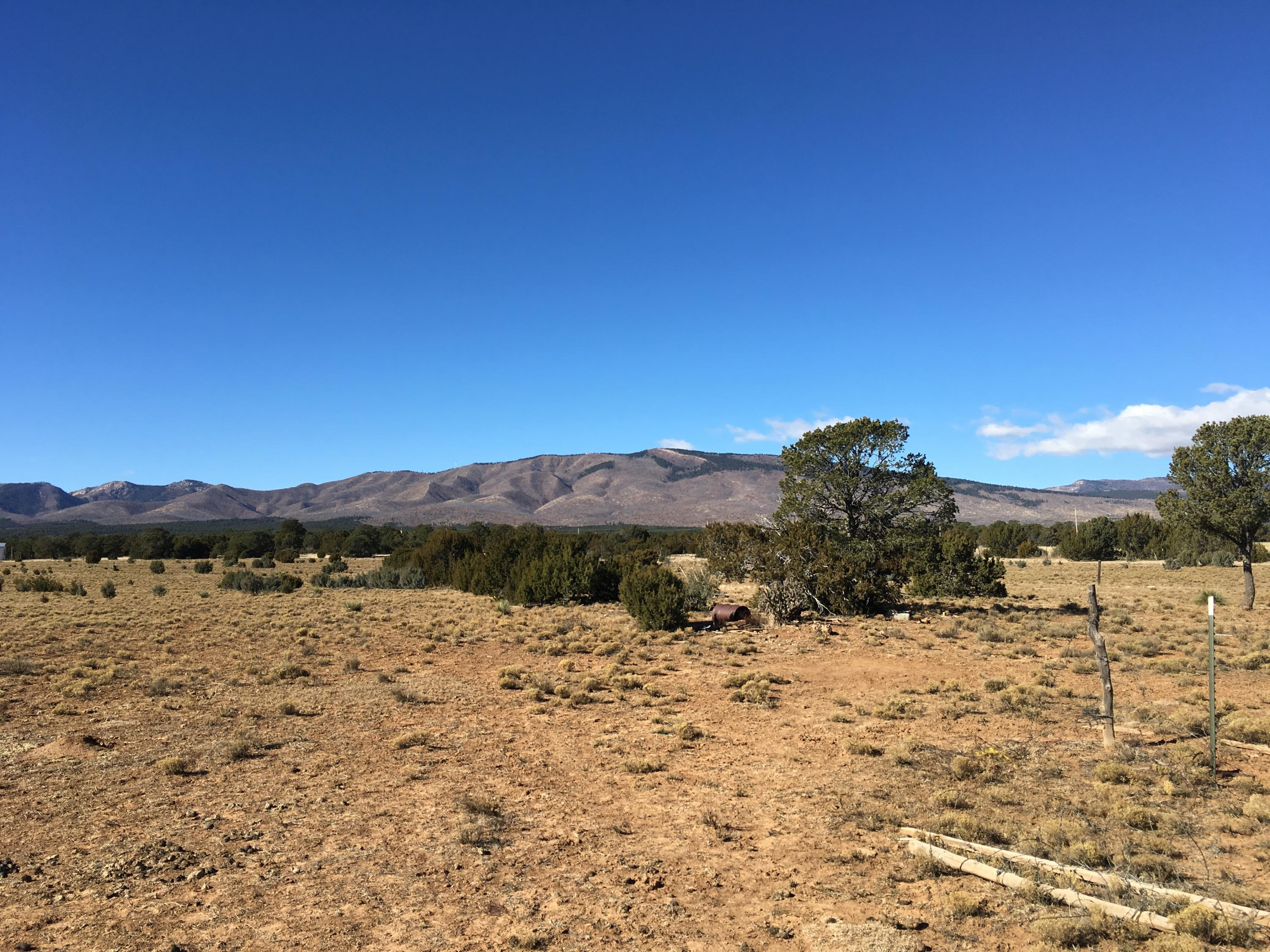 90 W Ten Pines Road Property Photo - Torreon, NM real estate listing