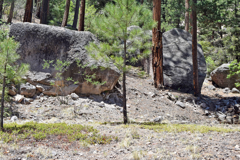 Beryl Road Property Photo - Jemez Springs, NM real estate listing