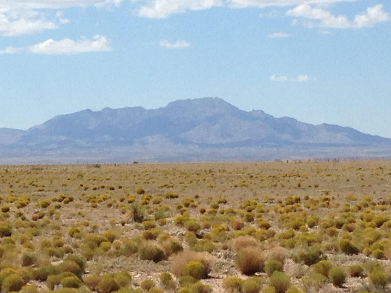 00 Holguin/Gallardo Street Property Photo - La Joya, NM real estate listing