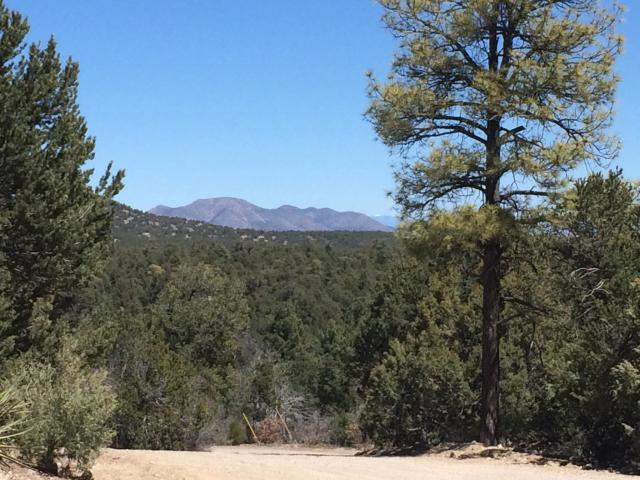 44 Whispering Pines Road Property Photo - Tijeras, NM real estate listing