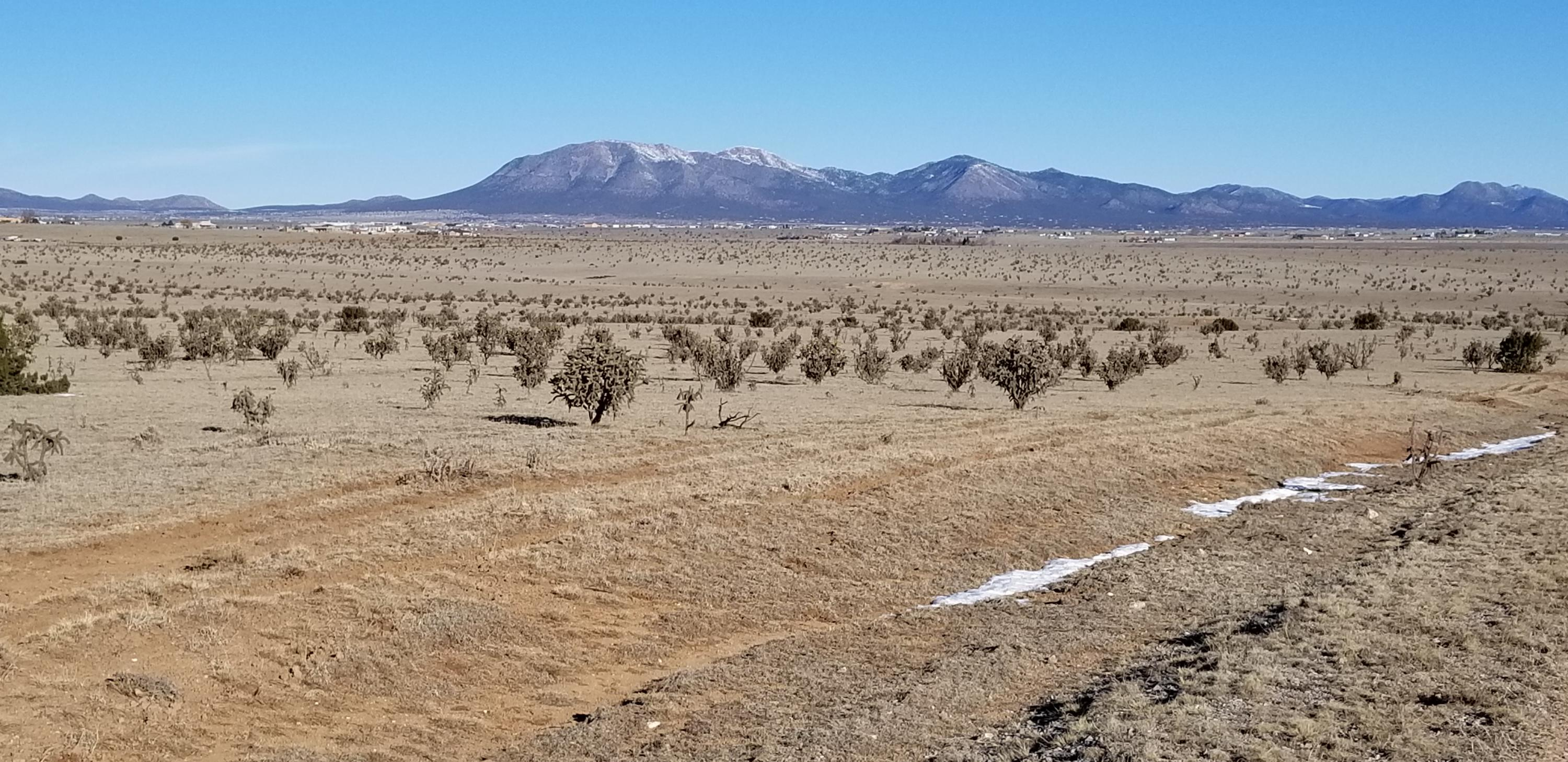 Thompson Road Property Photo - Moriarty, NM real estate listing