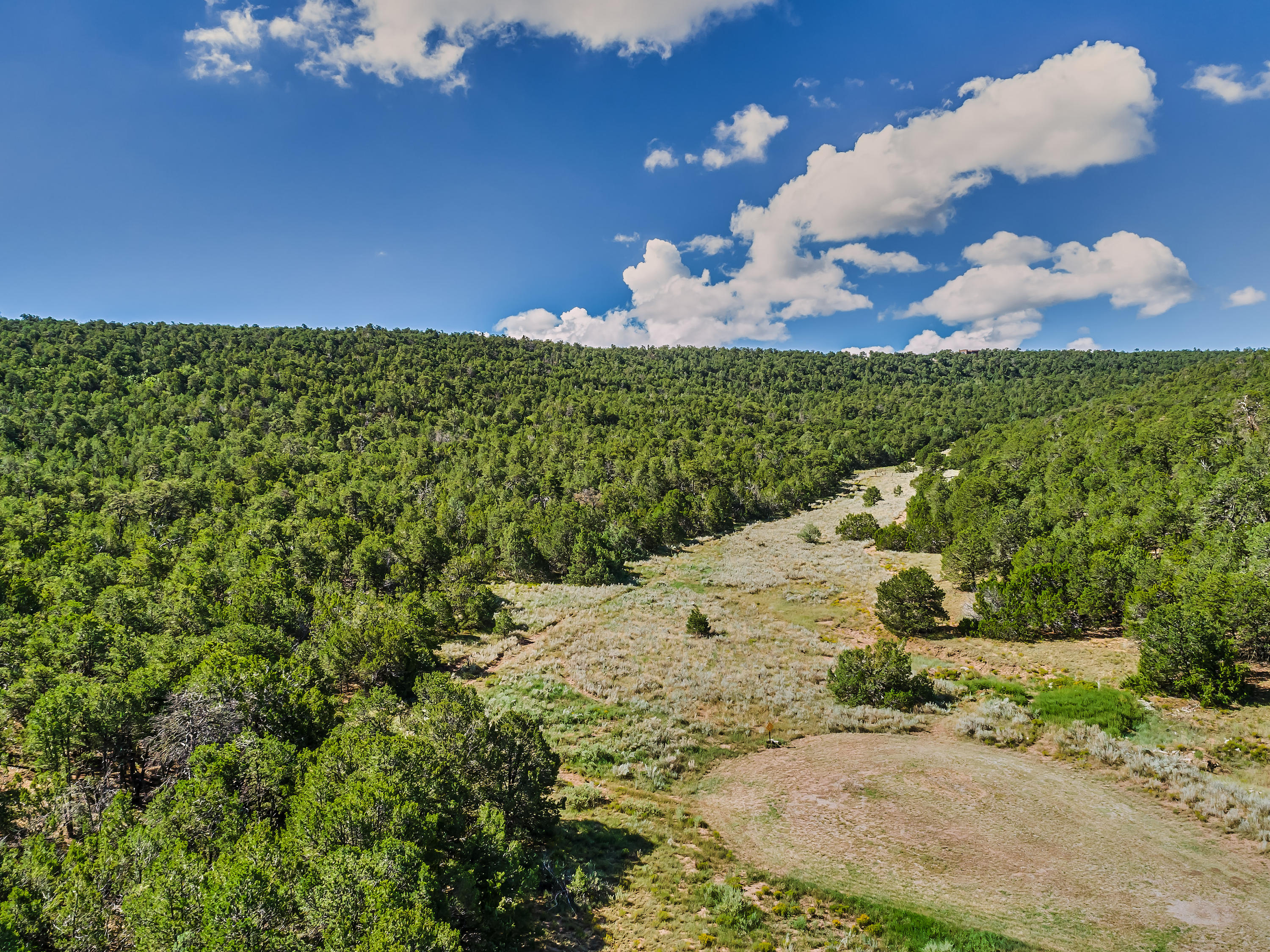 24 Anne Pickard Loop Property Photo - Tijeras, NM real estate listing