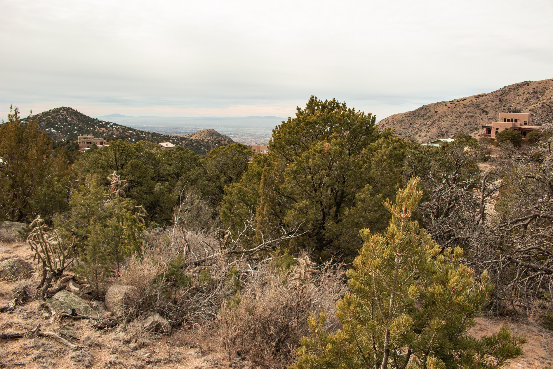 Circle Drive NE, Albuquerque, NM 87122 - Albuquerque, NM real estate listing