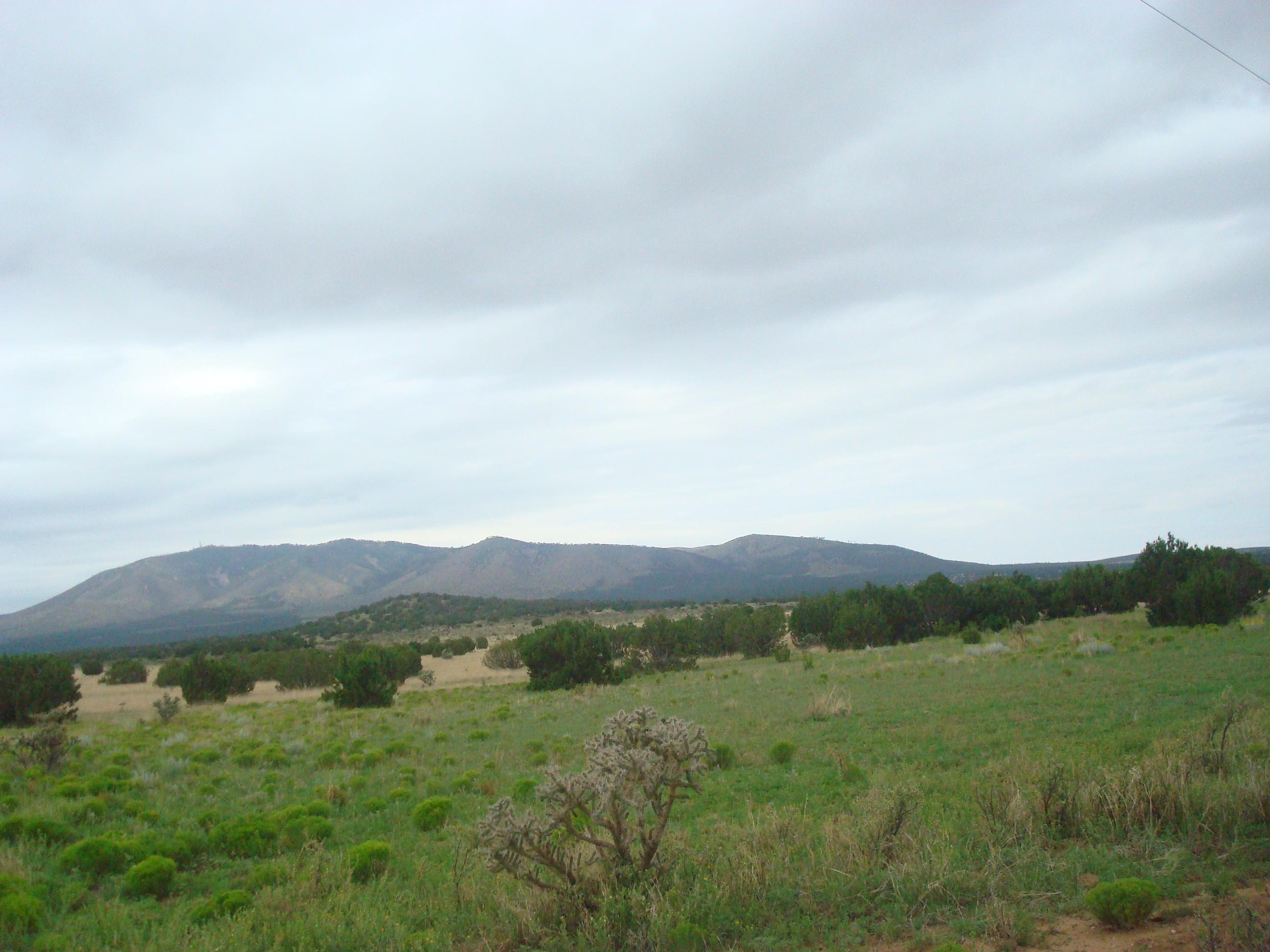 Grand Quiveria Highway Property Photo - Corona, NM real estate listing