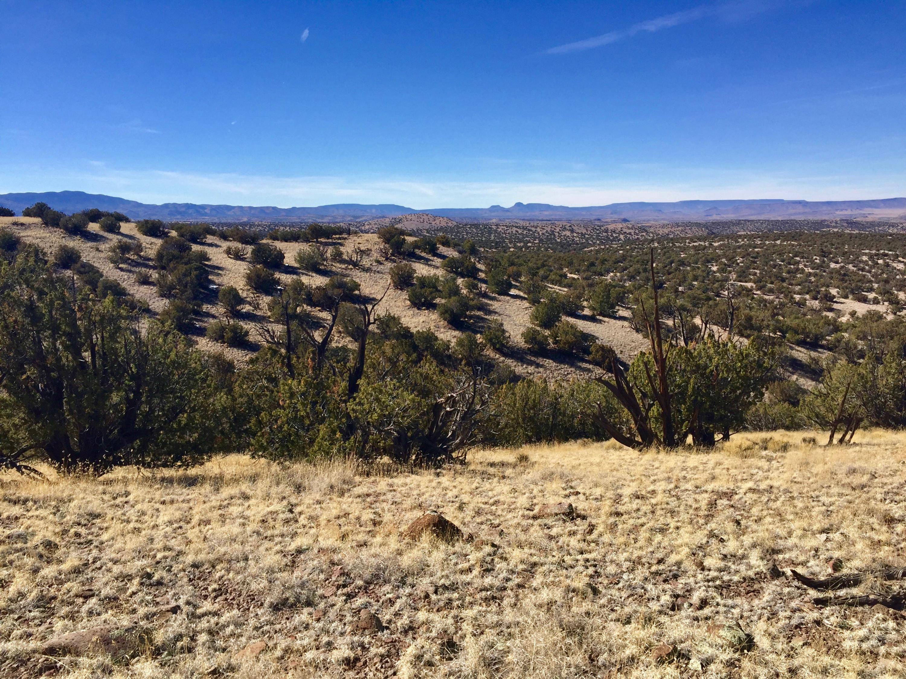 110 Abbe Springs Ranches Property Photo - Magdalena, NM real estate listing
