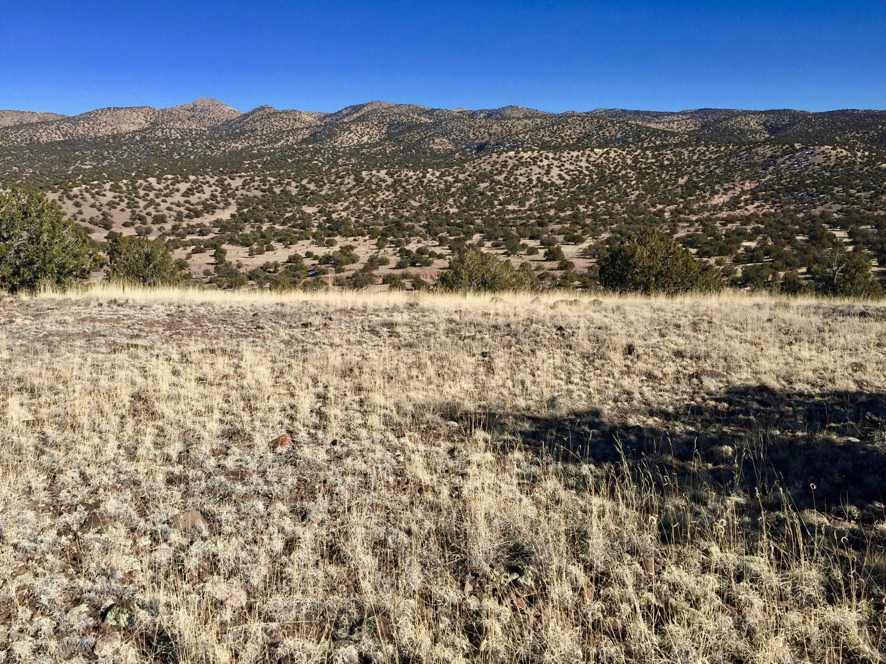 111 Abbe Springs Ranches Property Photo - Magdalena, NM real estate listing