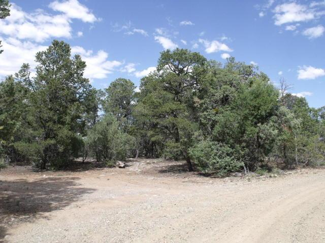 642 Co Rd B43B Property Photo - Ilfeld, NM real estate listing