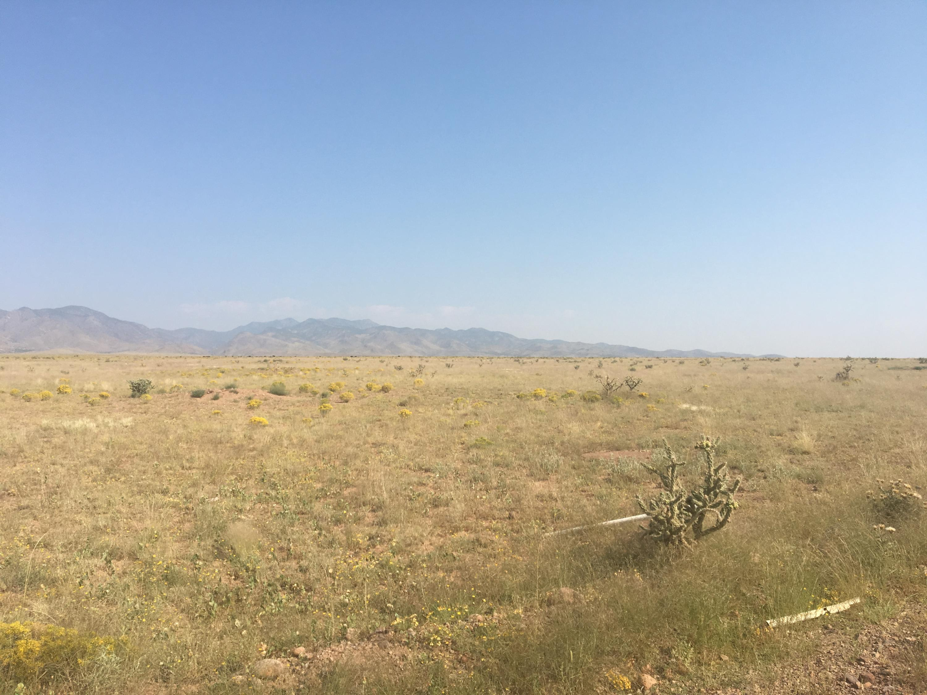 0 Cholla Court Property Photo - San Antonio, NM real estate listing