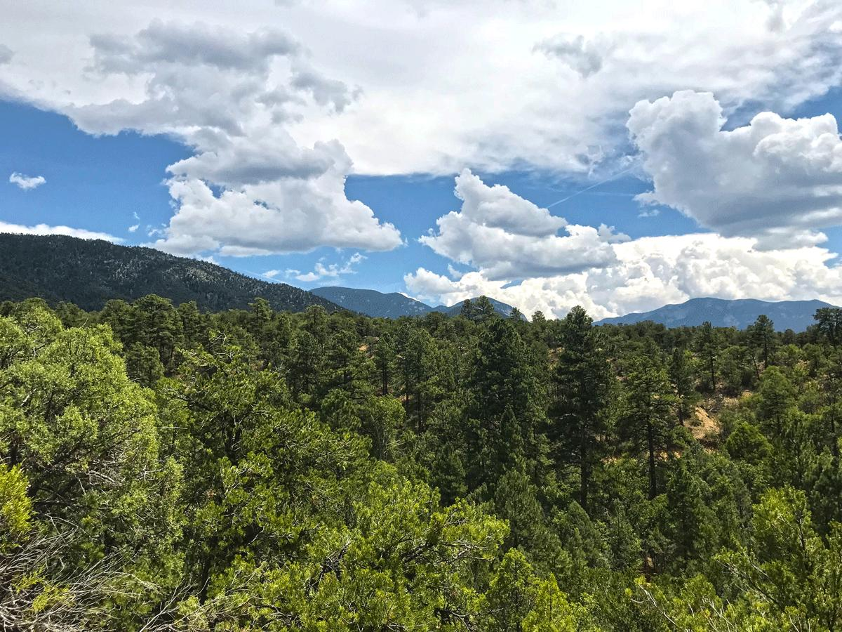 1 Gauging Trail Road Road Property Photo - Arroyo Hondo, NM real estate listing