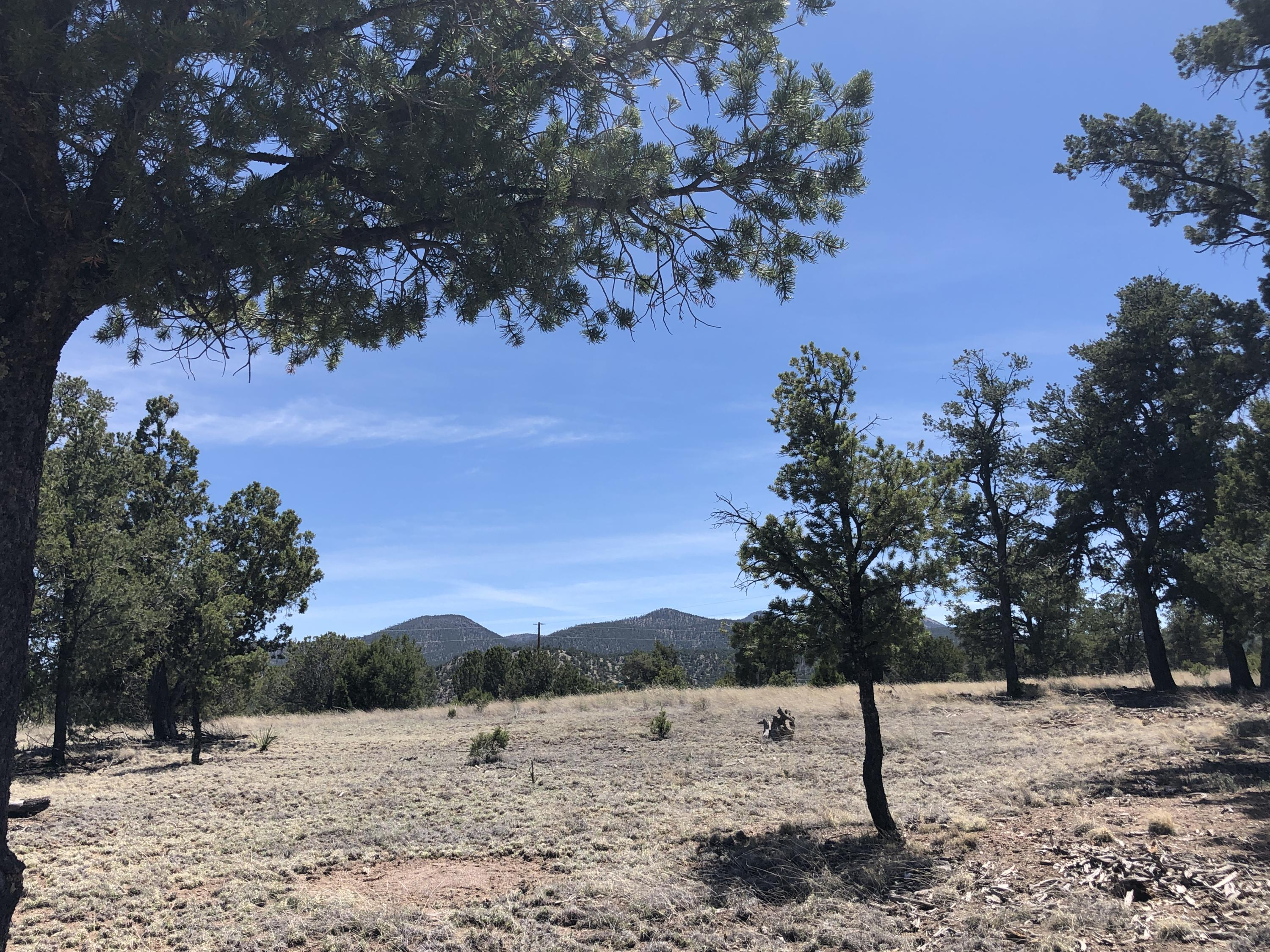 314 Morningstar Circle, Datil, NM 87821 - Datil, NM real estate listing