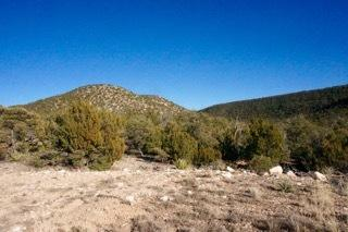1957 Deer Canyon Trail, Mountainair, NM 87036 - Mountainair, NM real estate listing