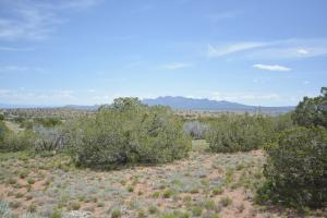 120 Diamond Tail Road, Placitas, NM 87043 - Placitas, NM real estate listing