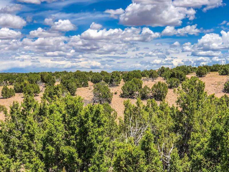 58 Barosa Road Property Photo - Santa Fe, NM real estate listing