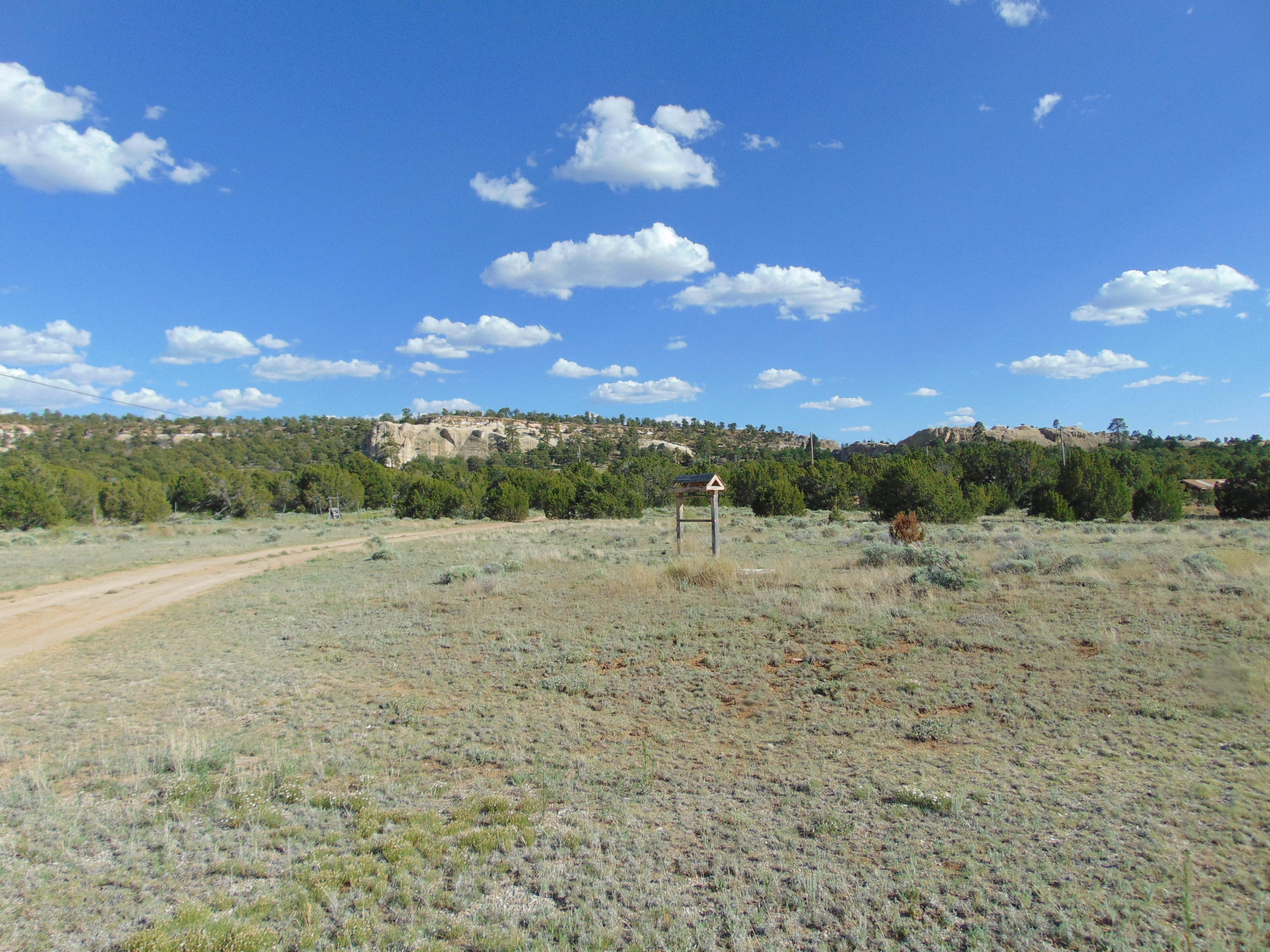 4268 Ice Caves Road Property Photo - Ramah, NM real estate listing