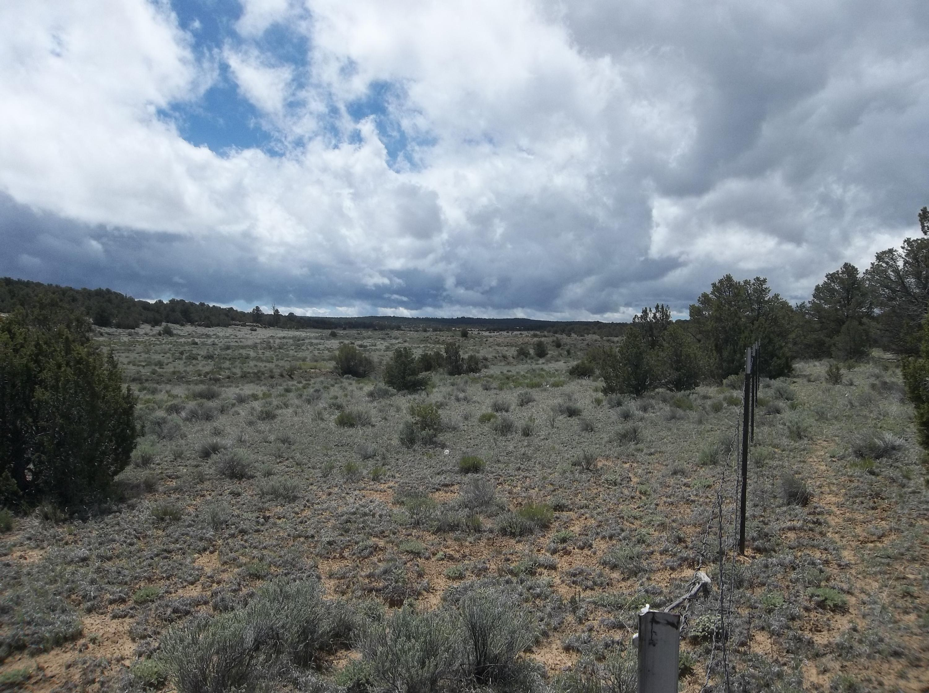 Lots 13-15 Sierra De Manana Property Photo - Ramah, NM real estate listing