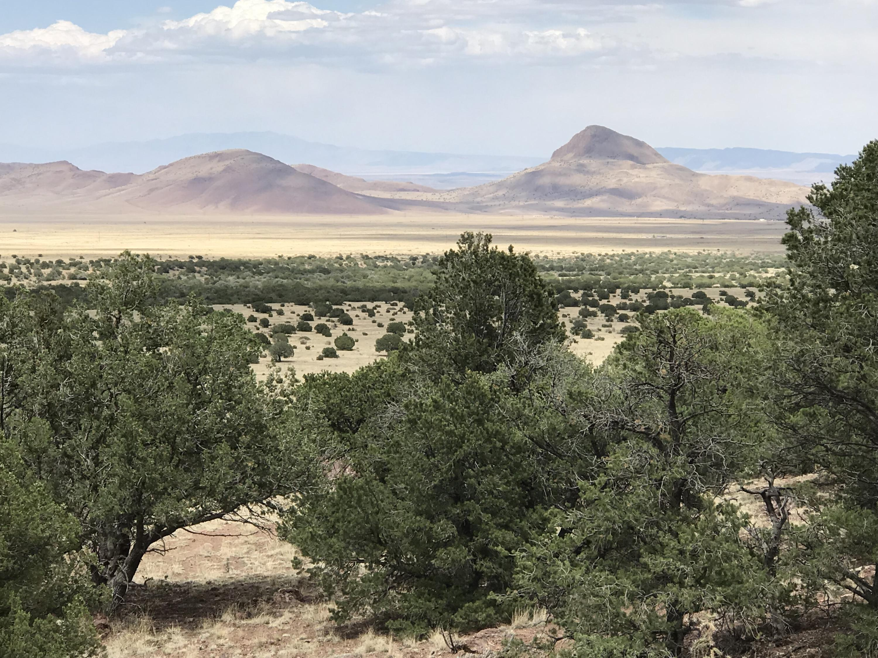Water Canyon, Magdalena, NM 87825 - Magdalena, NM real estate listing