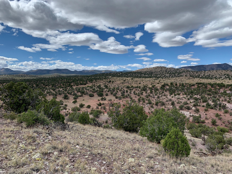 9 Pinon Springs Ranches, Magdalena, NM 87825 - Magdalena, NM real estate listing
