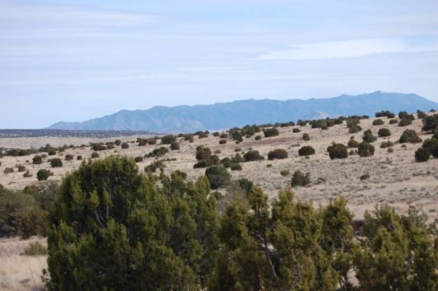 173 Campfire Road, Magdalena, NM 87825 - Magdalena, NM real estate listing