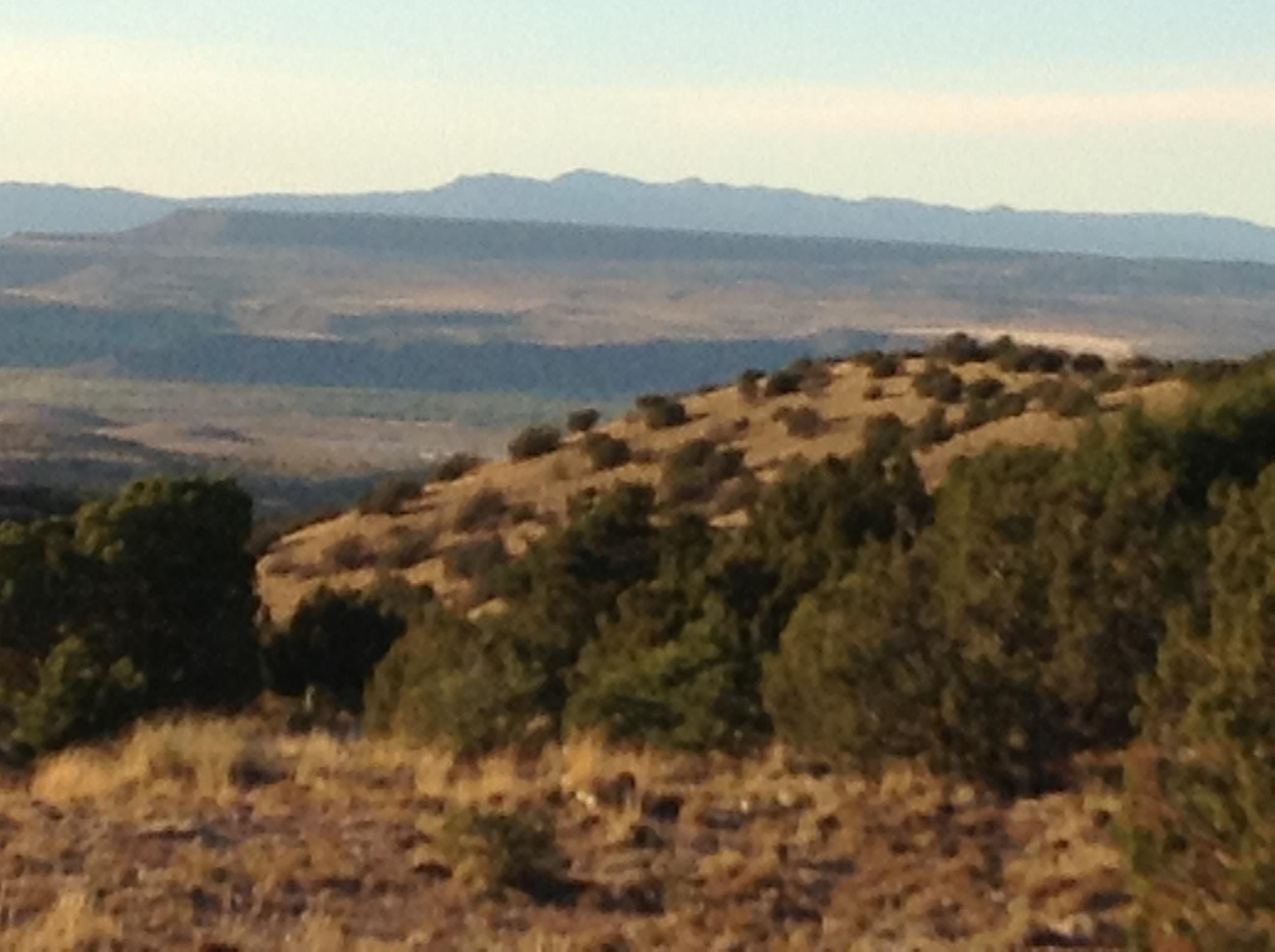 205 Camino Barranca Property Photo - Placitas, NM real estate listing