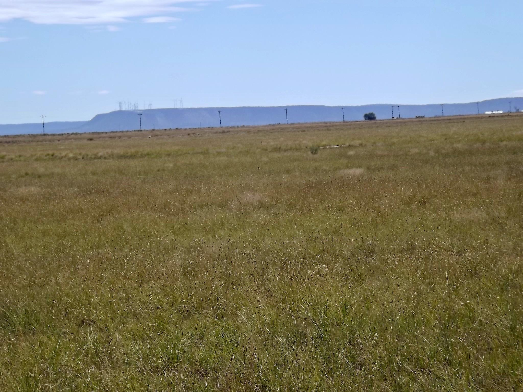 49 Corrie Drive Property Photo - Estancia, NM real estate listing