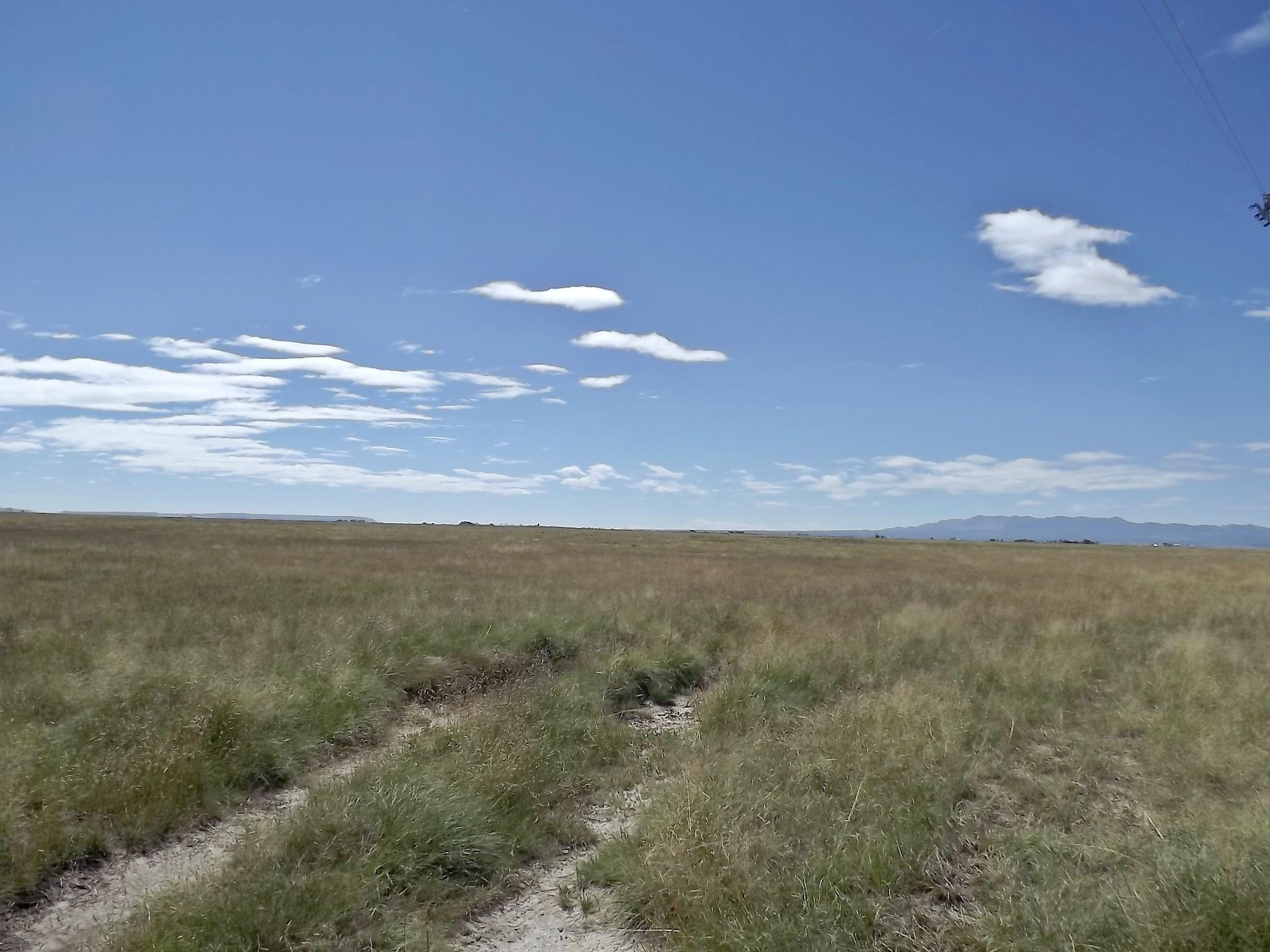 Langley Rd & NM 41 Property Photo - Estancia, NM real estate listing
